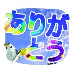 Sora1k240_2